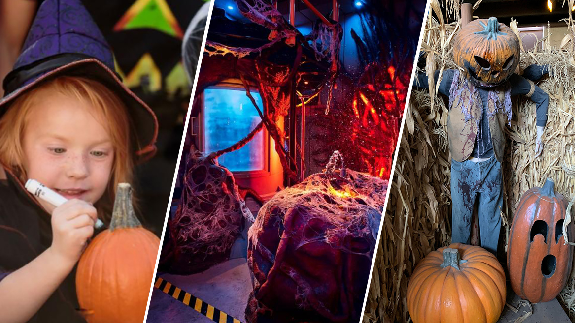 From theme parks to pumpkin patches, here are some of the family fun and spooky things to do during October, because Halloween is just around the corner.