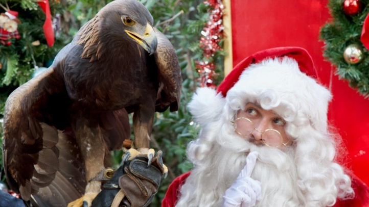 Kris Kringle and critters? That'll be the darling scene in Orange, as animals enjoy