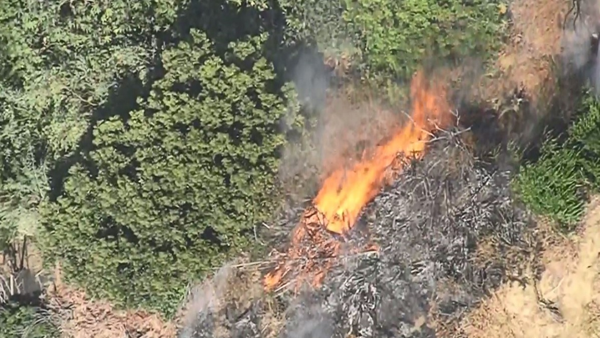 Possible Arson Suspected in San Pedro Brush Fire, LAPD Says